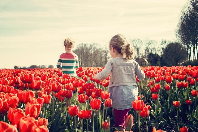 holčičky v tulipánech