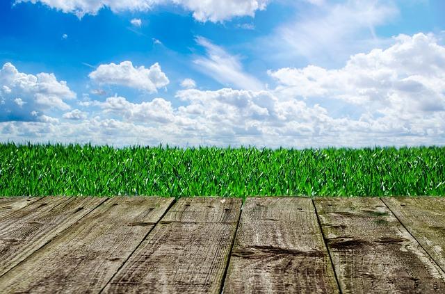 mraky nad trávníkem